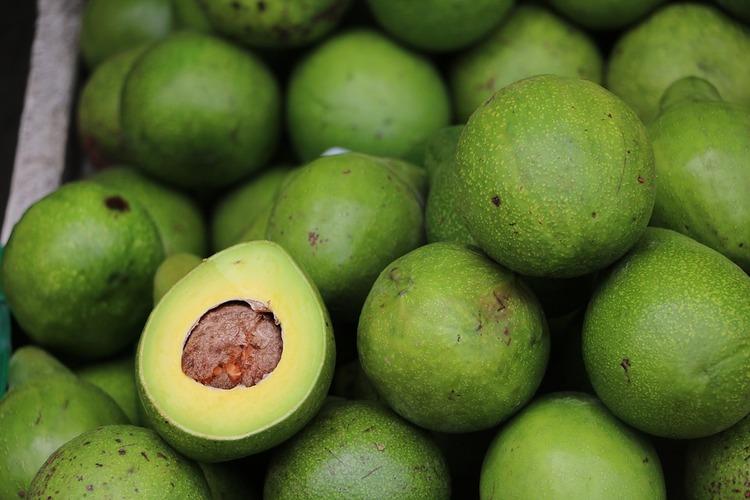 avocado-2742200_960_720