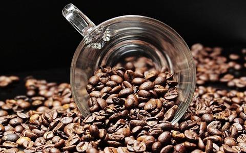 コーヒー「苦いです、息臭くなり