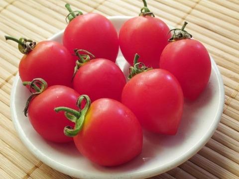 【悲報】トマト激マズすぎる
