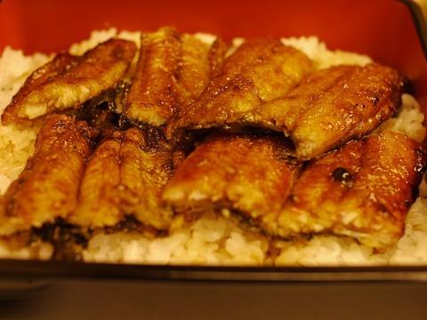【朗報】ワイの夕食、鰻