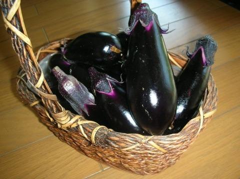 一番美味い野菜、