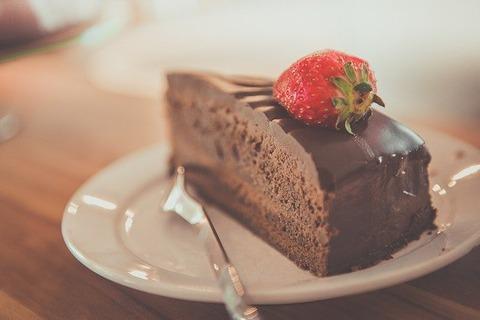 女の子(5)「将来はケーキ屋