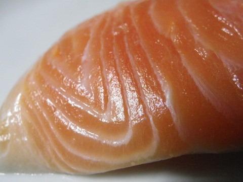 回転寿司でずっとサーモンばっかり
