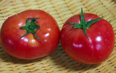トマトジュースって名前で損し