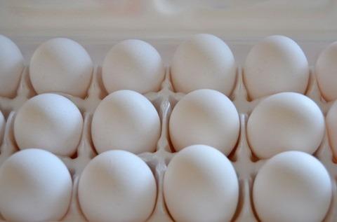 チキンラーメン「卵の卵黄にぐでたまシール