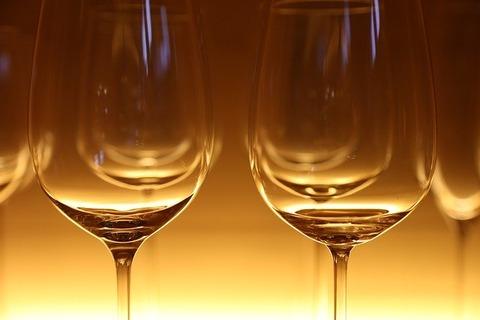 ワイ20歳、500円のワインを一口飲むw
