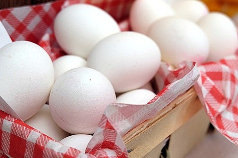 友達がゆで卵にマヨネーズつけてて食