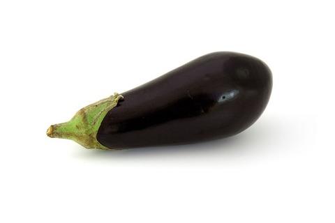 ナスより万能な野菜ってない