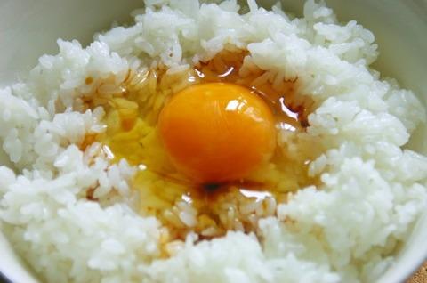 マジでうまい卵かけご飯の食い