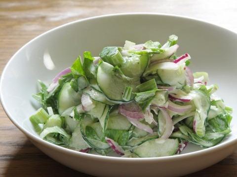 ワイ野菜好き、昼飯野菜ばっかり食べてたら