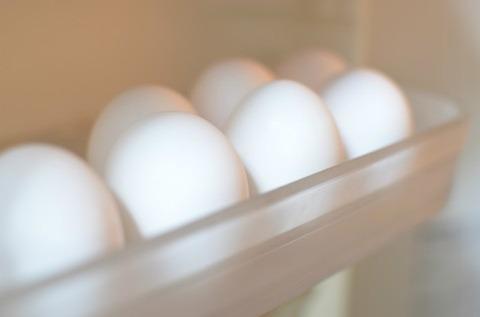鶏以外の鳥の卵食べ