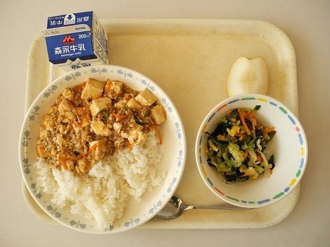 おんj民、麻婆豆腐は絹豆腐か