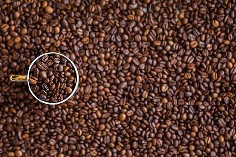 コーヒーに詳しい人ちょっと
