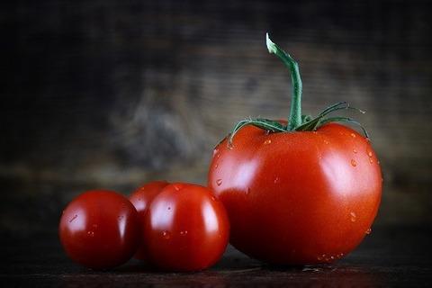 世間「生のトマトおいしいね!」ワイ