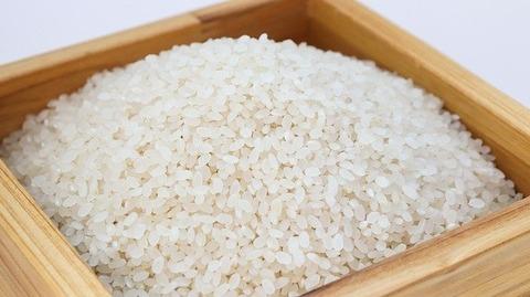 昔の農民「白米食えないから粟とか