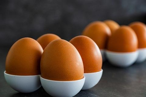 卵の意外な事実で打線