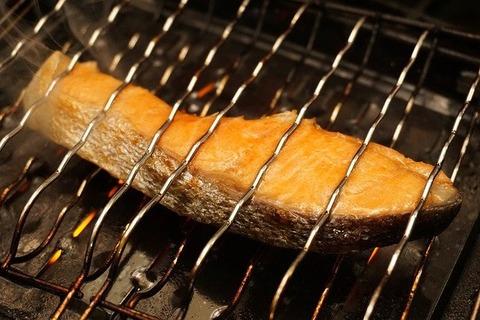 焼き鮭用の鮭っていくらくらい
