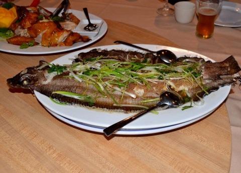 ヒラメ→高級魚、カレイ→