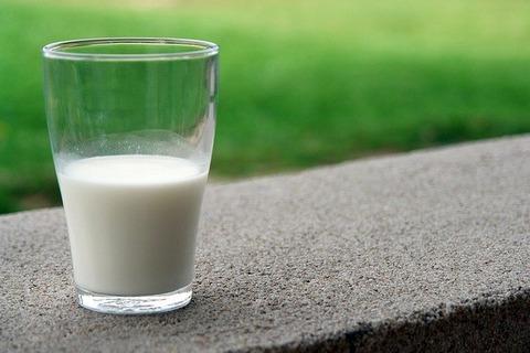 牛乳に最も合う食べ物No
