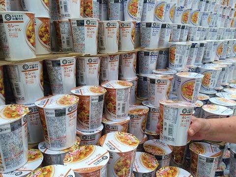 毎月1万もらえるけどカップ麺が食