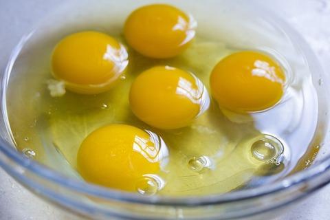 【急募】美味しい卵焼きの