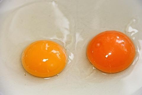 「卵かけご飯」を「たまごぽん」