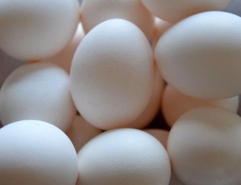どうみても生卵な煮玉子