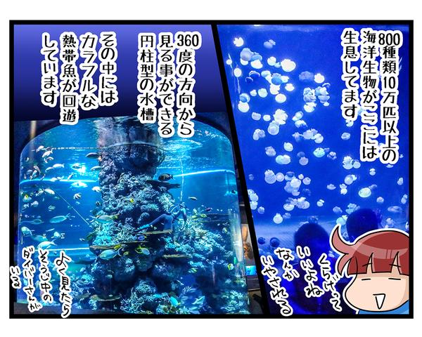海外旅行SINGAPORE★水族館04