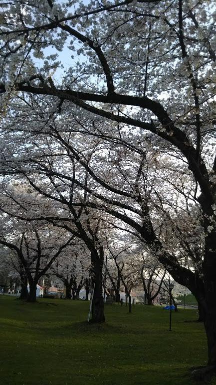 ぶらっと霞城公園