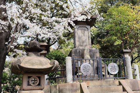 UenoOnshiKouen2014Spring14_R