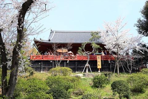 UenoOnshiKouen2014Spring19_R