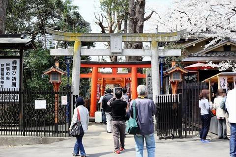 UenoOnshiKouen2014Spring11_R