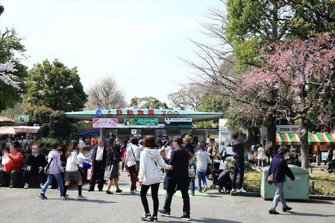 UenoOnshiKouen2014Spring21_R