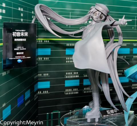 WF2013S_GSC_Rengou_Scale24