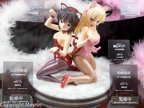 WF2013S_GSC_Rengou_Scale02