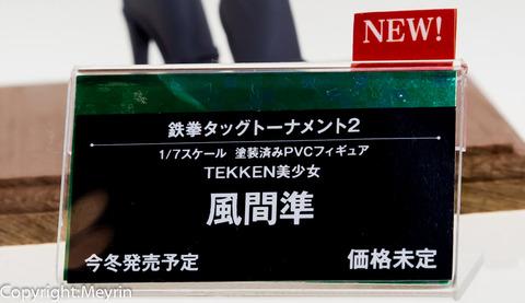 WF2013S_Kotobukiya41