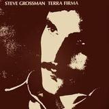 STEVE GROSSMAN����TERRA FIRMA��