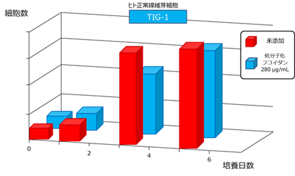 data01-image-02