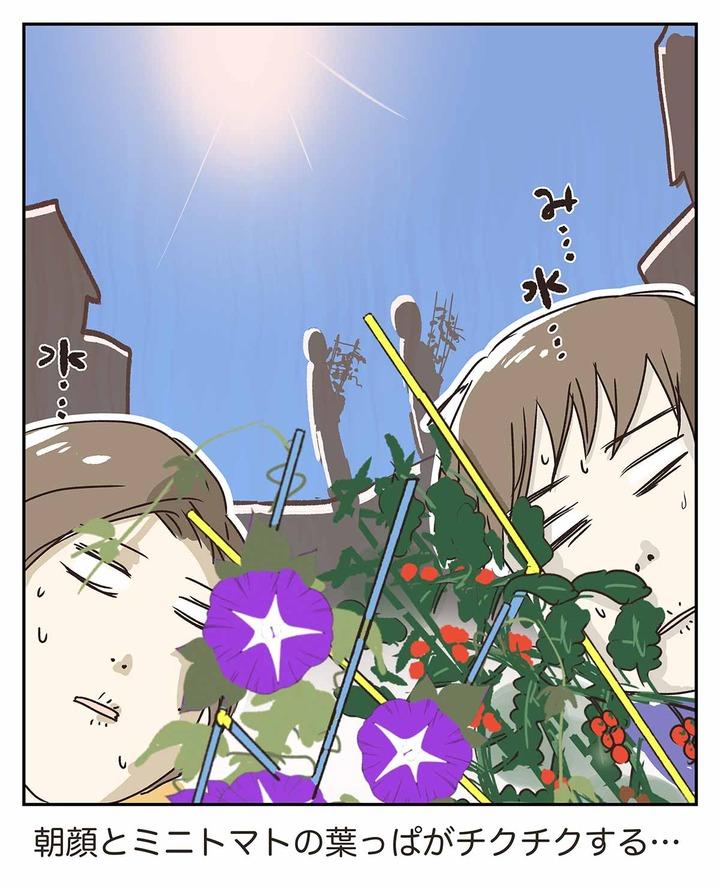 夏休み前には親にもアサガオとかの鉢植えの宿題があるらしい