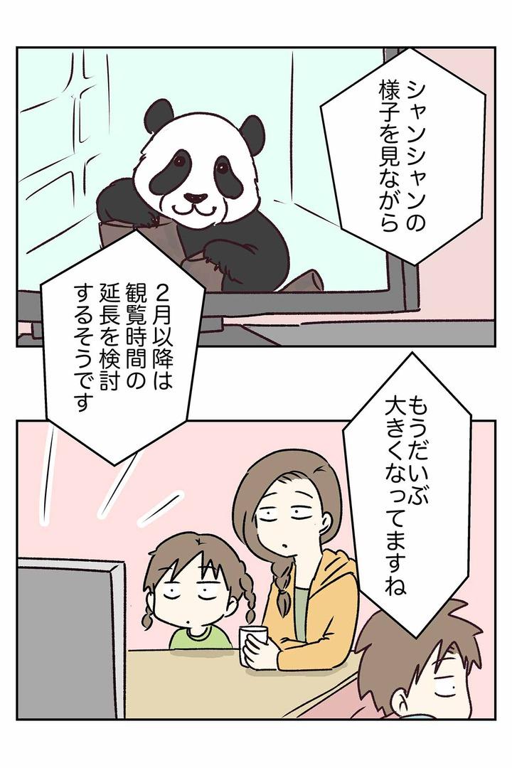 パンダのシャンシャンは可愛くて人気者。つまり?