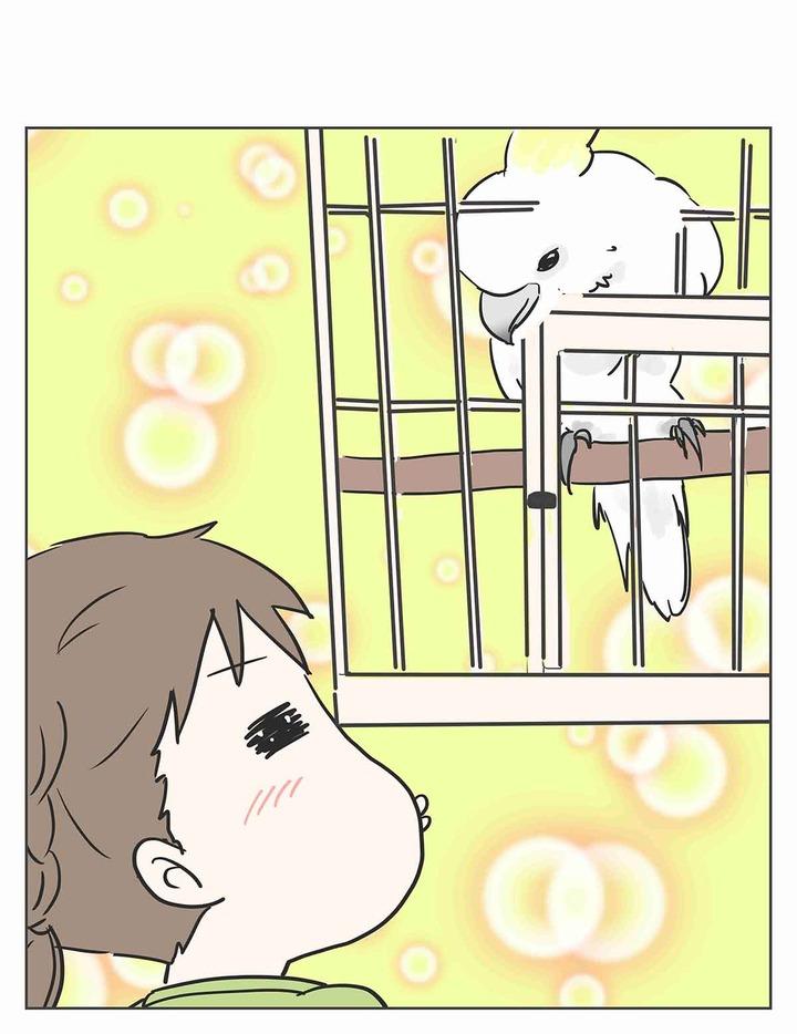 彼女がまだ駆け出しの鳥だった頃
