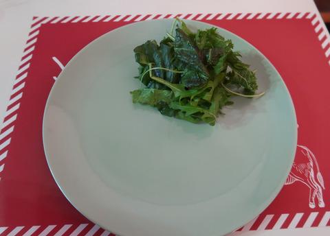 メイン用のお皿(サラダのみ)   19.1.29   268