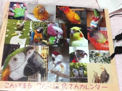 7f897122.jpg
