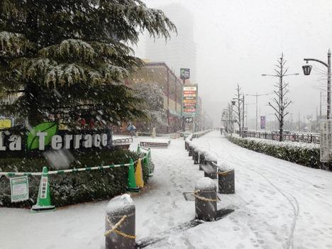 2013年1月14日 雪 2