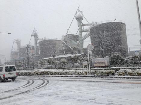 2013年1月14日 雪 1