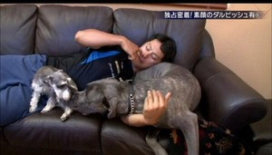 【エンタメ画像】【メジャーリーガー】ダルビッシュ訴えられた 犬の世話役かみつかれた 米紙報じるってよwwwwww
