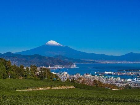 【東海地震】実は地震が全く来ない「静岡」という県がありますww
