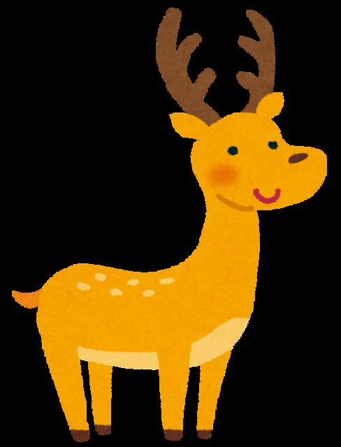 【悲報】鹿の親子がお店に突撃した結果とんでもない事になるwww