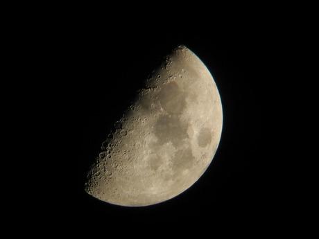八日月(上弦の月) 141229