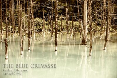 THE BLUE CREVASSE 02
